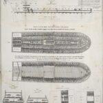 Slave ship diagram (Wikimedia).